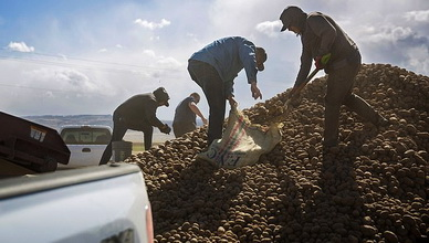 The first shipment purchased was 43,000 pounds of potatoes from Cranney's Farms in Idaho